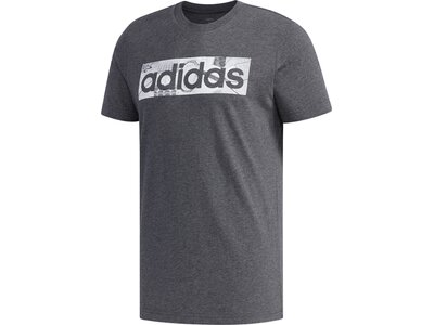 ADIDAS Herren Shirt BXD PHOTO T Grau