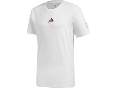 ADIDAS Herren Shirt Doodle 360 Grau