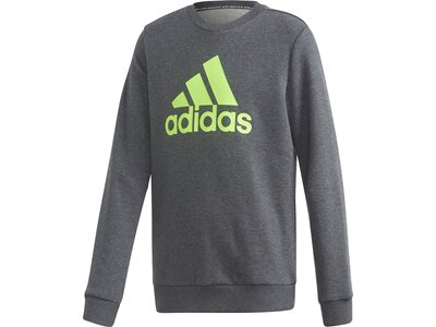 adidas Jungen Must Haves Sweatshirt Grau