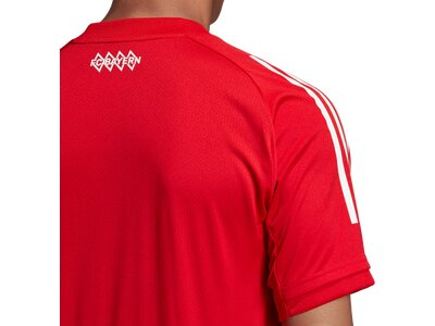 ADIDAS Replicas - T-Shirts - National FC Bayern München Trainingsshirt Rot