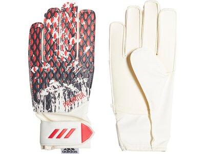 adidas Jungen Predator 20 Manuel Neuer Training Torwarthandschuhe Grau