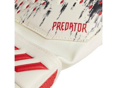 "ADIDAS Torwarthandschuhe ""Predator"" Rot"