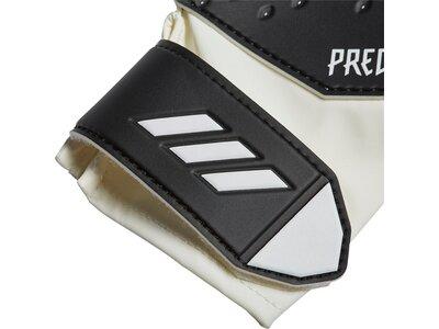 adidas Kinder Predator 20 Training Torwarthandschuhe Grau