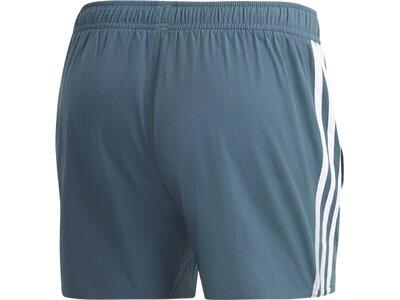 ADIDAS Herren Schwimmanzug 3S CLX SH VSL Grau