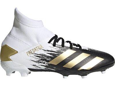 adidas Kinder Fußballschuhe PREDATOR 20.3 FG Weiß