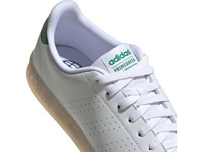 "ADIDAS Lifestyle - Schuhe Herren - Sneakers Advantage ""Primgreen"" ADIDAS Lifestyle - Schuhe Herren - Grau"