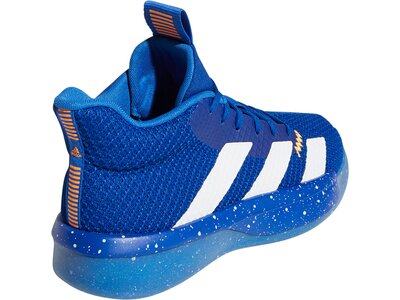 ADIDAS Herren Pro Next 2019 Schuh Blau