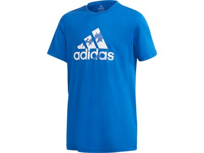 ADIDAS Kinder Shirt B A.R. PRME TEE Blau