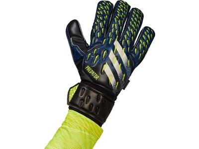 adidas Predator Match Fingersave Torwarthandschuhe Schwarz