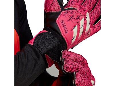 adidas Predator Match Fingersave Torwarthandschuhe Pink