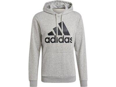 adidas Herren Essentials Big Logo Hoodie Silber