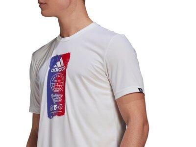 ADIDAS Herren Shirt M FTO ICN T Pink