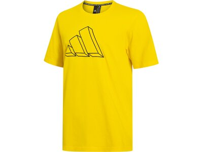 ADIDAS Herren Shirt M FI GFX TEE Gold
