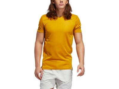 ADIDAS Herren Shirt TRG TEE H.RDY Braun