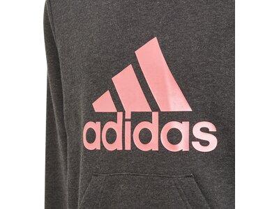 adidas Kinder Future Icons Logo Hoodie Grau