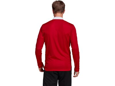 ADIDAS Fußball - Teamsport Textil - Jacken Tiro 21 Trainingsjacke ADIDAS Fußball - Teamsport Textil Rot