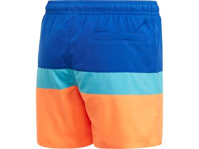 adidas Kinder Colorblock Badeshorts Blau