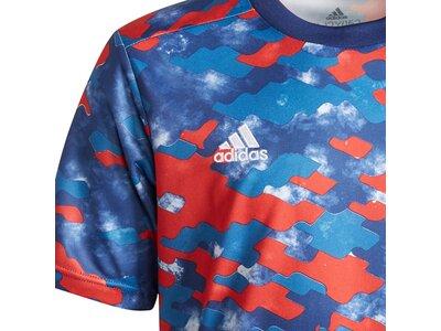 adidas Kinder FC Bayern München Pre-Match Shirt Blau