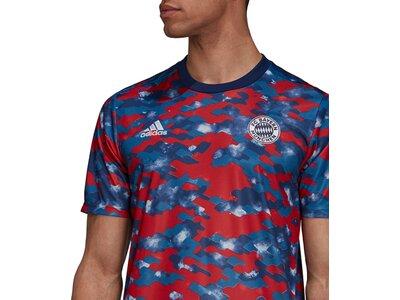 adidas Herren FC Bayern München Pre-Match Shirt Grau