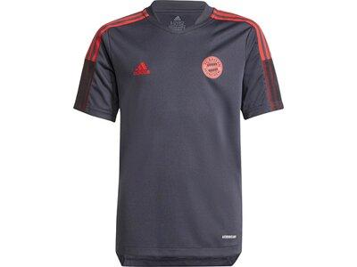 adidas Kinder FC Bayern München Tiro Trainingstrikot Grau