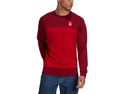 adidas Herren FC Bayern München Graphic Sweatshirt Rot