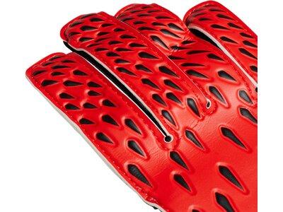 adidas Kinder Torwarthandschuhe Predator Training Rot