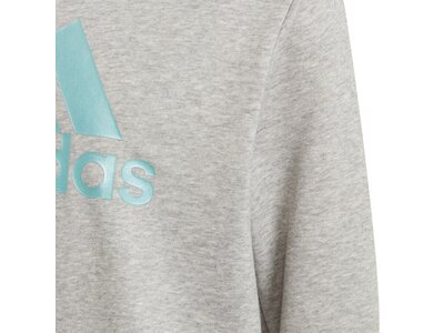 adidas Kinder Future Icons Logo Crew Sweatshirt Silber