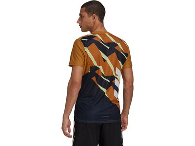 adidas Herren TERREX Parley Agravic Trail Running Pro T-Shirt Braun