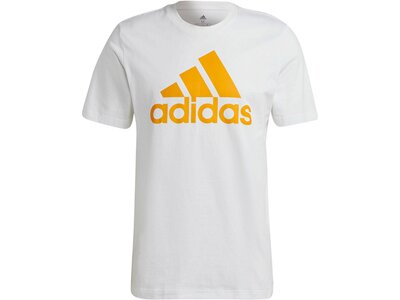 adidas Herren Essentials Big Logo T-Shirt Grau