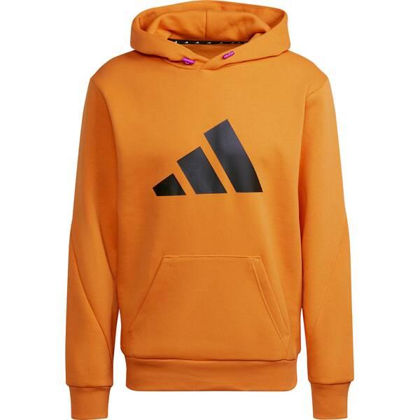 adidas Herren Sportswear Future Icons Winterized Hoodie