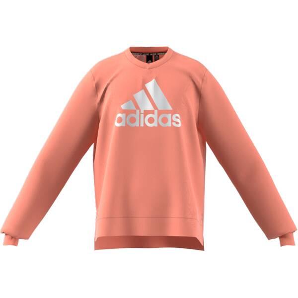 adidas Kinder Future Icons Logo Crew Sweatshirt