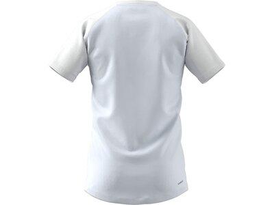 adidas Herren AEROREADY Designed to Move Sport Motion Logo T-Shirt Grau