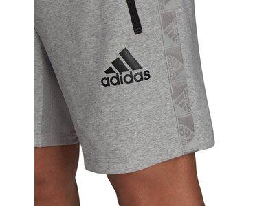adidas Herren AEROREADY Designed to Move Sport Motion Logo Shorts Grau