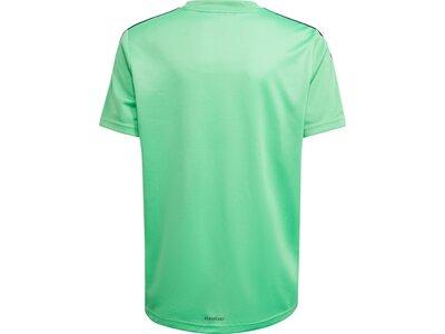 adidas Kinder Designed 2 Move 3-Streifen T-Shirt Blau