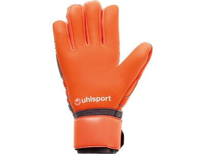 UHLSPORT Handschuhe ABSOLUTGRIP HN Grau