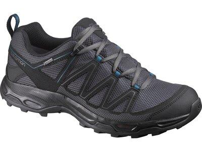 SALOMON Herren Schuhe WENTWOOD GTX India In Grau
