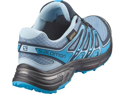 SALOMON Damen Trailrunningschuhe Wings Flyte 2 Gtx® W Grau