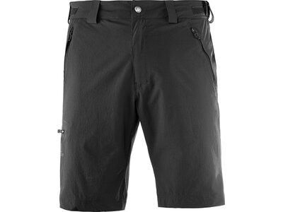SALOMON Herren Shorts Wayfarer Short M Grau