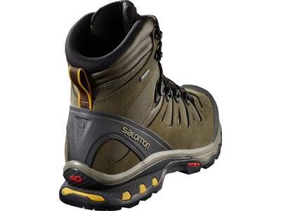 SALOMON Herren Schuhe QUEST 4D 3 GTX® Wren Grau