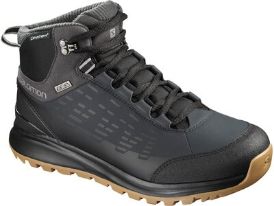 SALOMON Herren Schuhe KAÏPO CS WP 2 Bk/PHAN Grau
