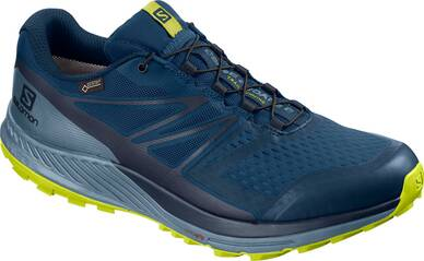 SALOMON Herren Trailrunningschuhe SENSE ESCAPE 2 GTX