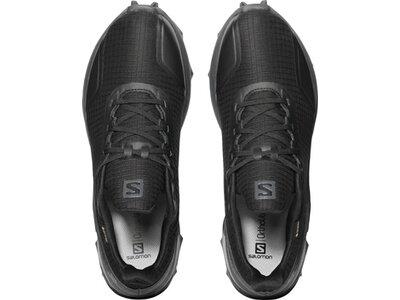SALOMON Herren Schuhe ALPHACROSS GTX Bk/Ebo Grau