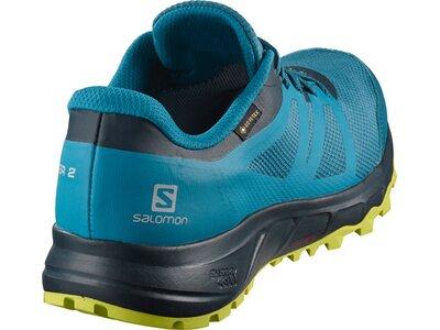 SALOMON Herren Trailrunningschuhe TRAILSTER 2 GTX Blau