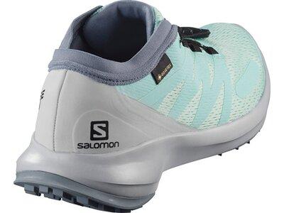 SALOMON Damen Trailrunningschuhe SENSE FLOW GTX W Silber
