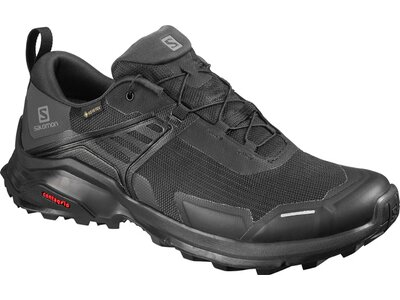 SALOMON Herren Outdoorschuhe X RAISE GTX Grau