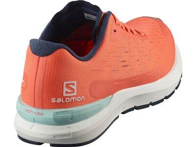 SALOMON Damen Trainingsschuhe SONIC 3 Balance Braun
