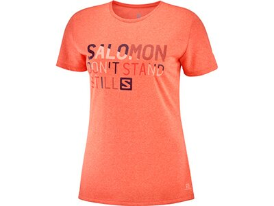 SALOMON Damen T-Shirt COMET CLASSIC TEE W PRINT Orange