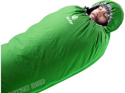 DEUTER Schlafsack Astro 250 Grün