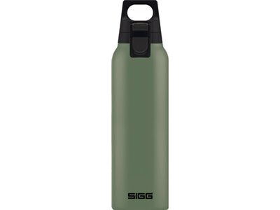 SIGG Trinkbehälter H&C One Leaf Green Grün