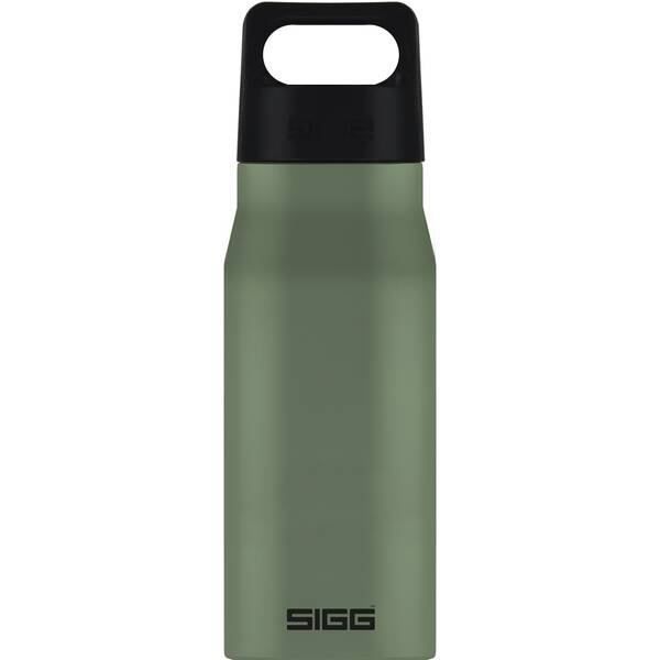 SIGG  Trinkflasche Explorer Leaf Green